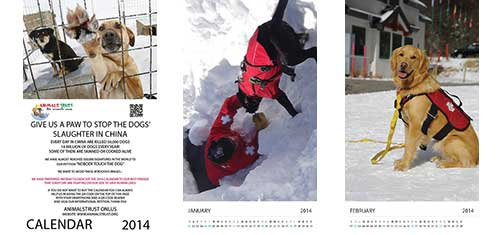 AnimalsTrust Calendar 2014