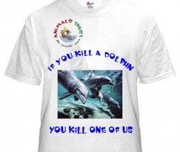 If you kill a Dolphin you kill one of us