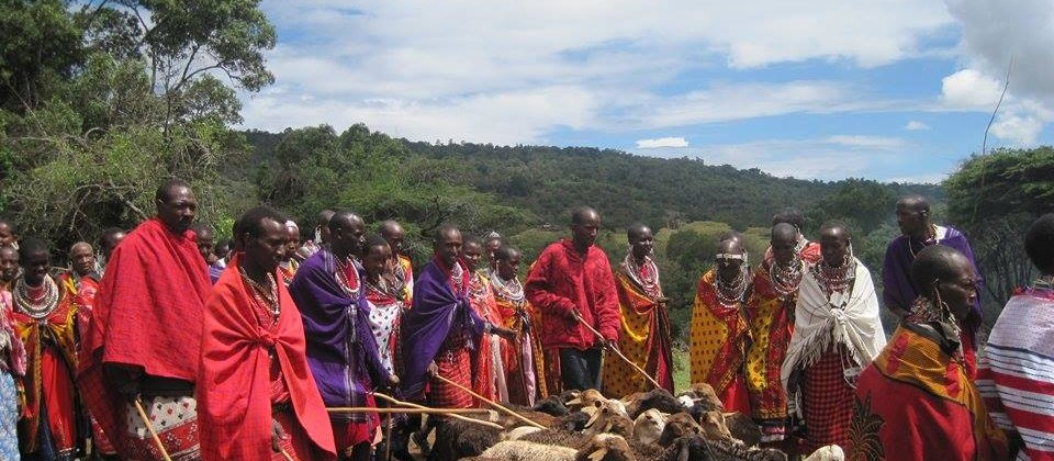 Save Maasai land and Animals
